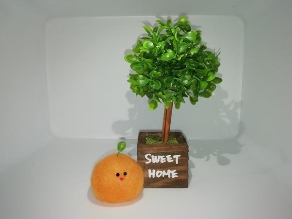 みかんと木